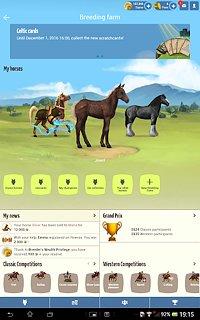Howrse - snímek obrazovky